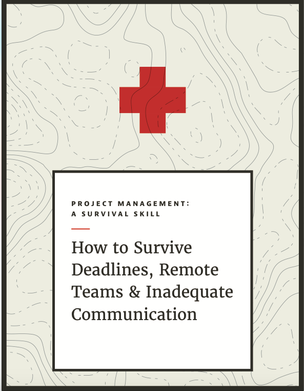 project-managment-survival-ebook